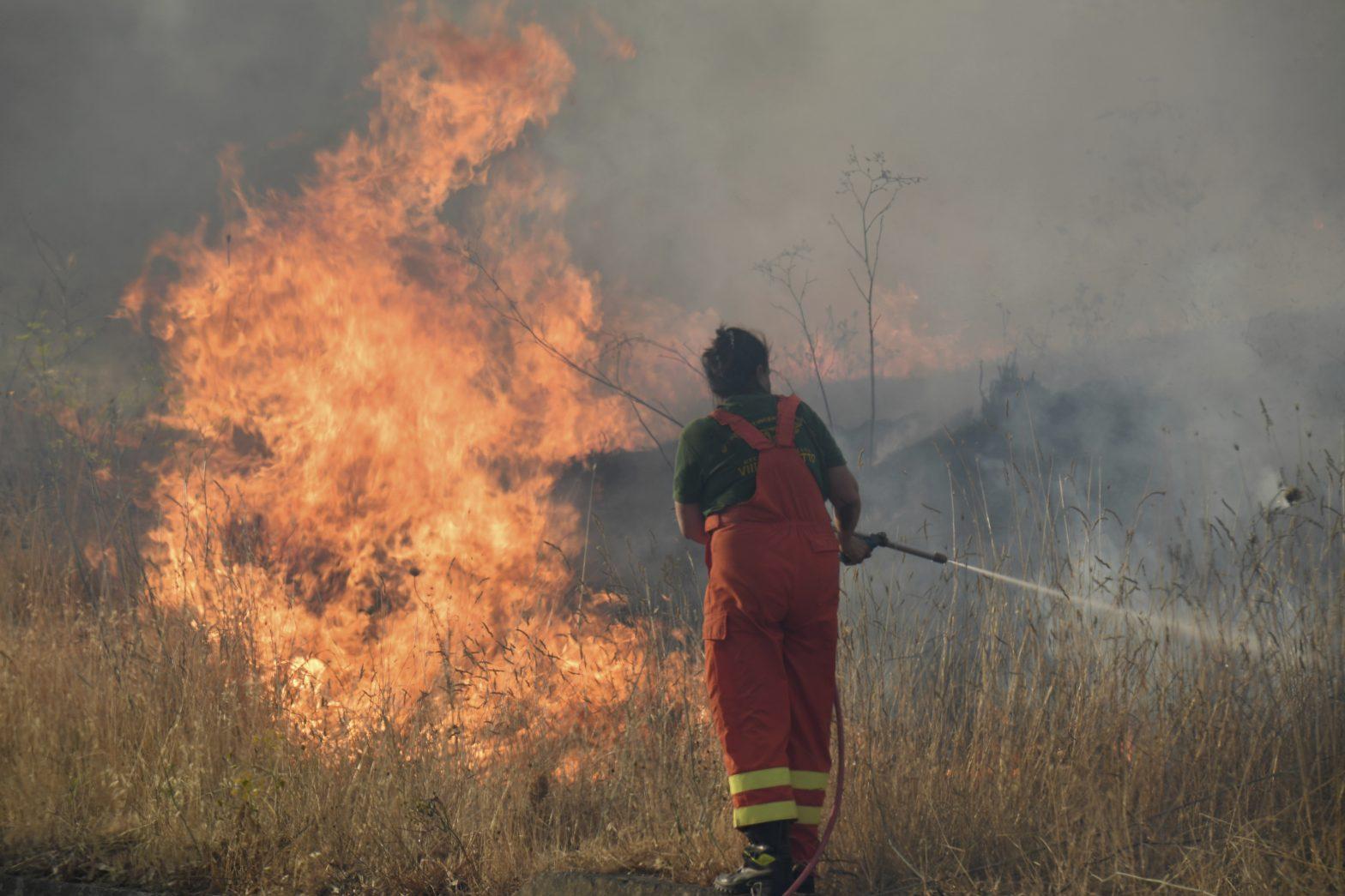 Sicily Wildfires